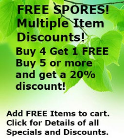 Free Spores Buy More and Save Money