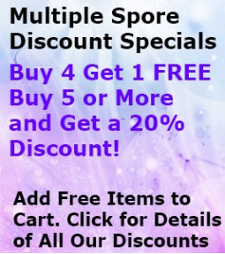Specials Multiple Spore Discount