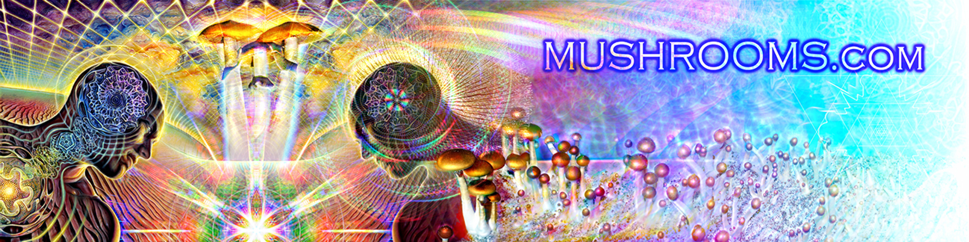 muShrooms.com